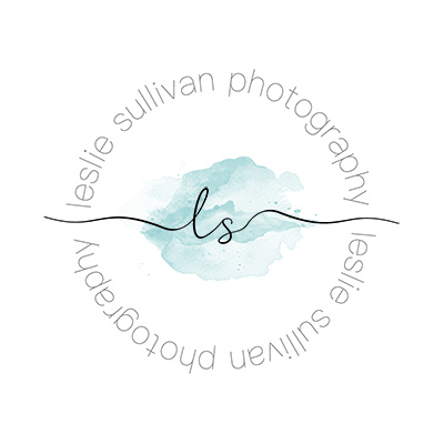 LS logo small 4000